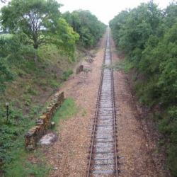 Une coupe de bois dans la ligne droite (pont des Bordes)